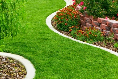 concrete garden edge separates lawn and flowers