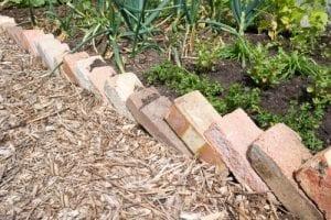 path edge made with bricks lying diagonally