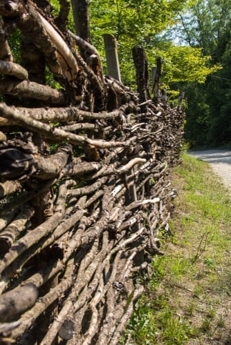 wood twigs and branches are woven into a fence