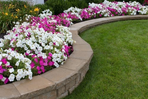 paver stones are used to create a garden wall filled with pink and white flowers