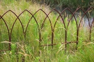 simple metal fence is placed as garden edge