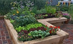 raised garden bed made with wood that is in sections planted