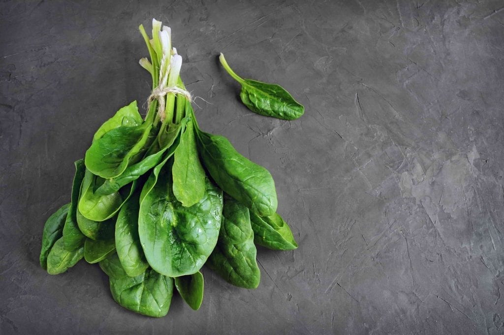 a bunch of tied fresh spinach leaves on dark background