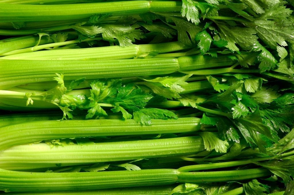 fresh celery stalks with leaves lying side by side