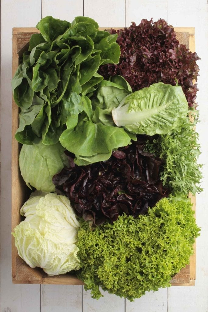 Several different lettuce varieties in wood tray