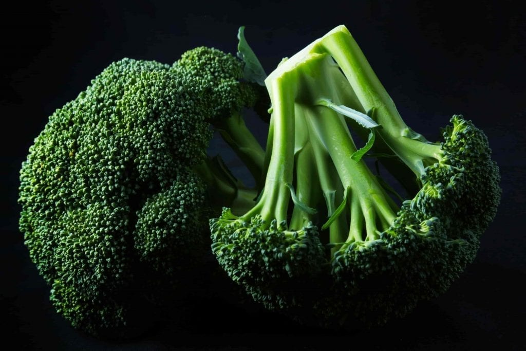 broccoli picked from the fall garden on dark background