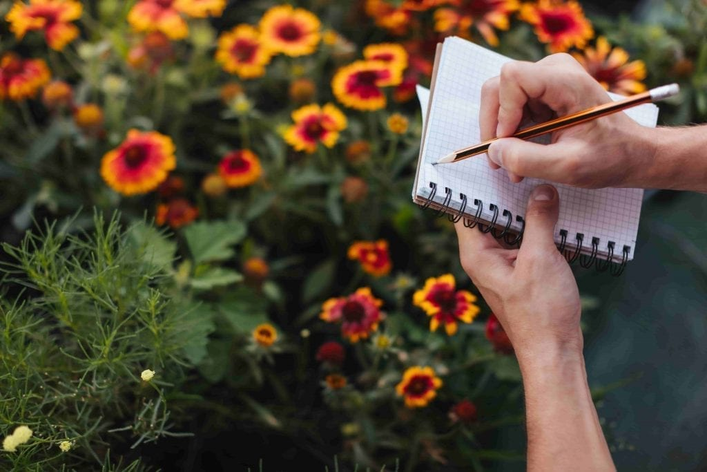 gardener taking notes of plant performance prep for cold weather