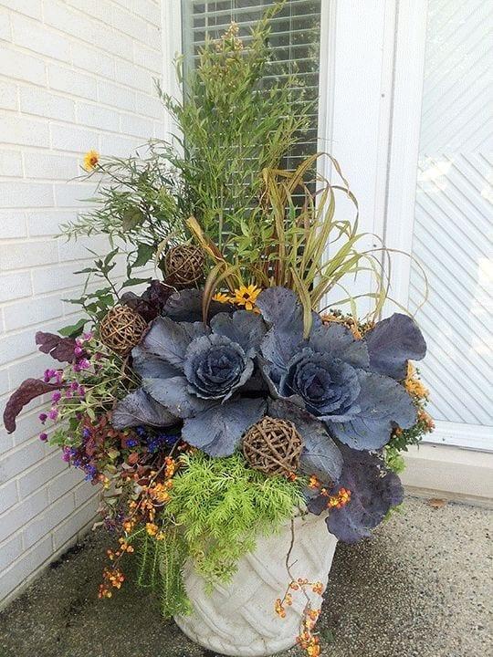 fall planter in white ceramic includespurple cabbage, tall grass and verbena