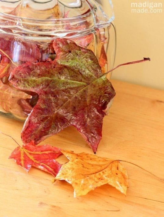 fall leaves and color are preserved using decoupage for fall decorations
