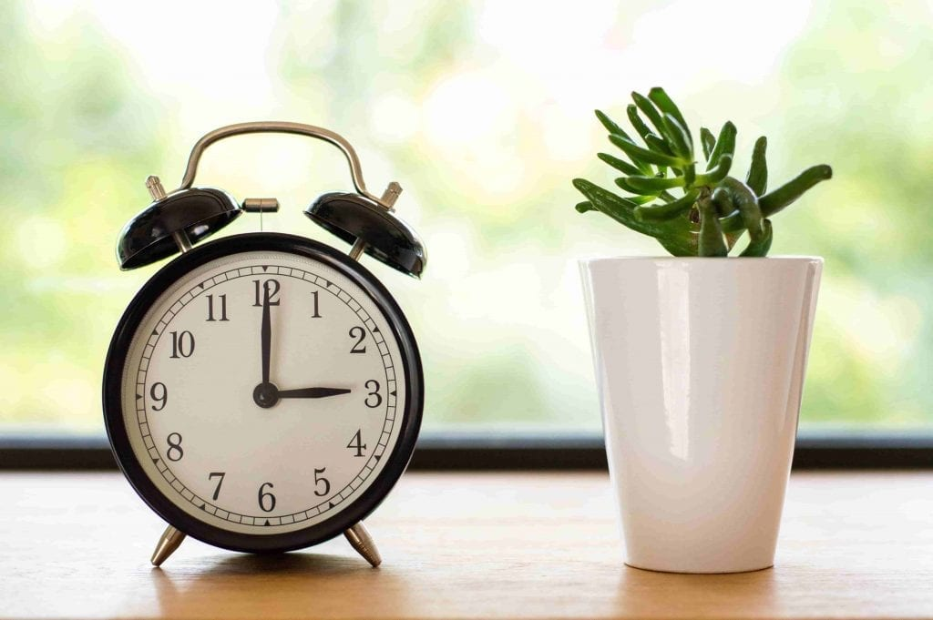 timers are the perfect gift for gardeners