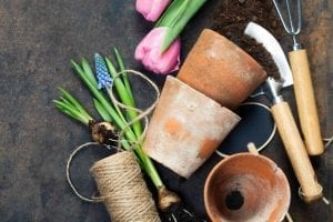 garden tools are the perfect gifts for gardeners