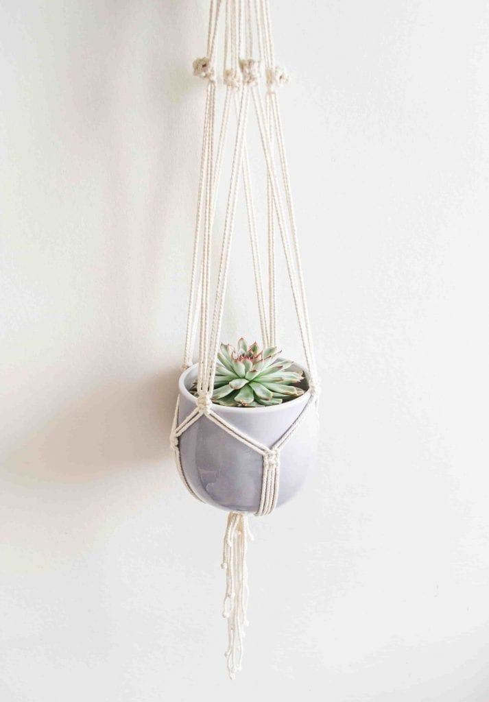 Macrame Pot Hanger with plant
