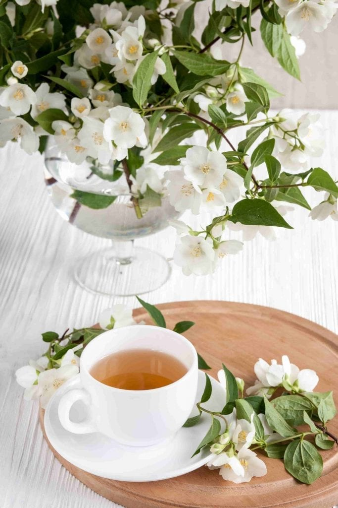 cure insomnia with jasmine plant  flower and cup of tea sleep better