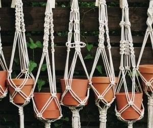 macrame plant hanger from Patterns Hub