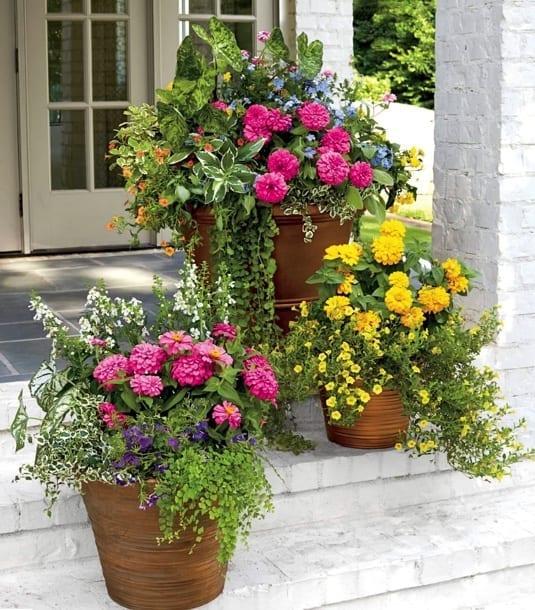 container gardening three pots