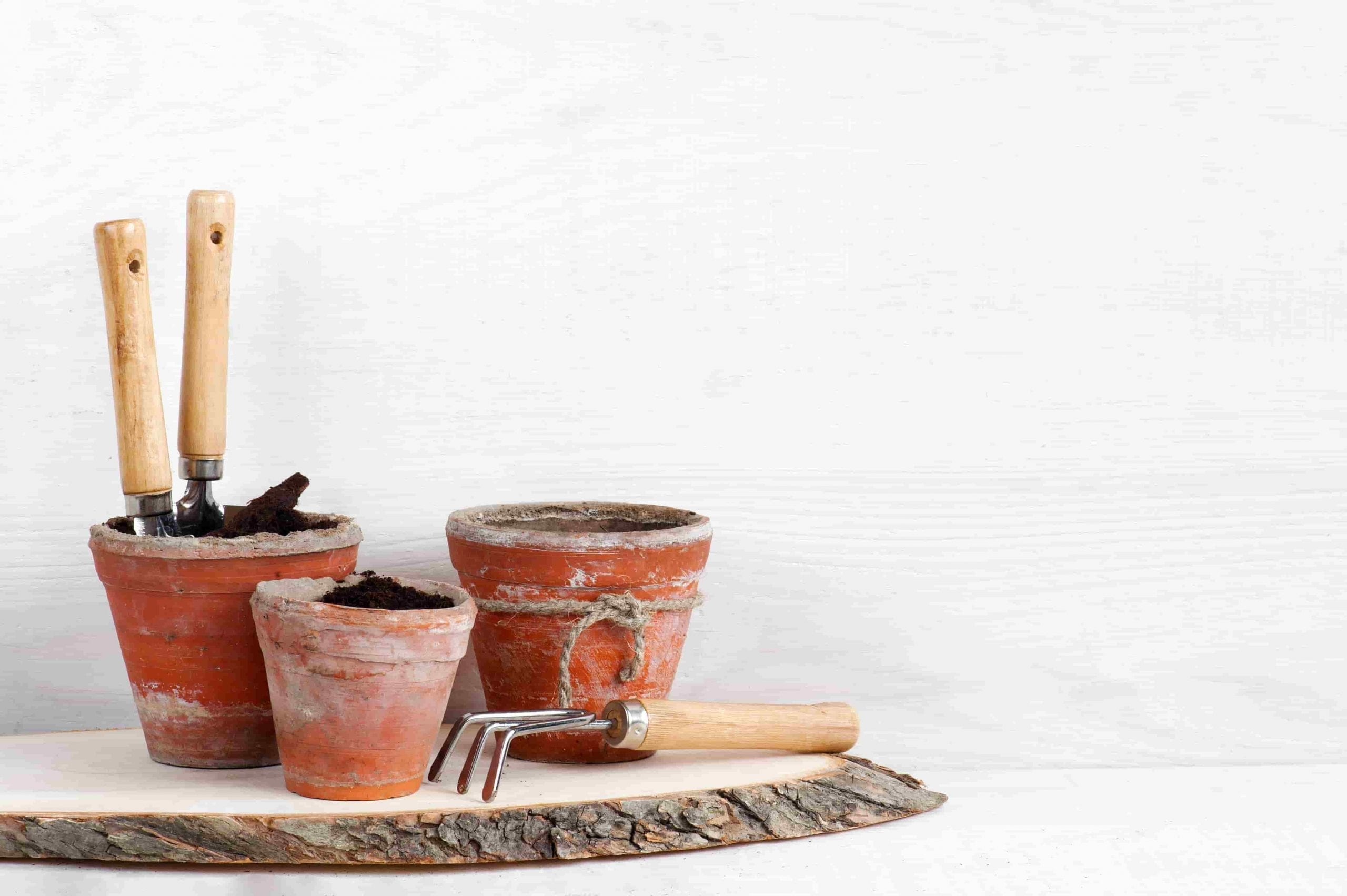 gifts for gardeners garden tools and pots