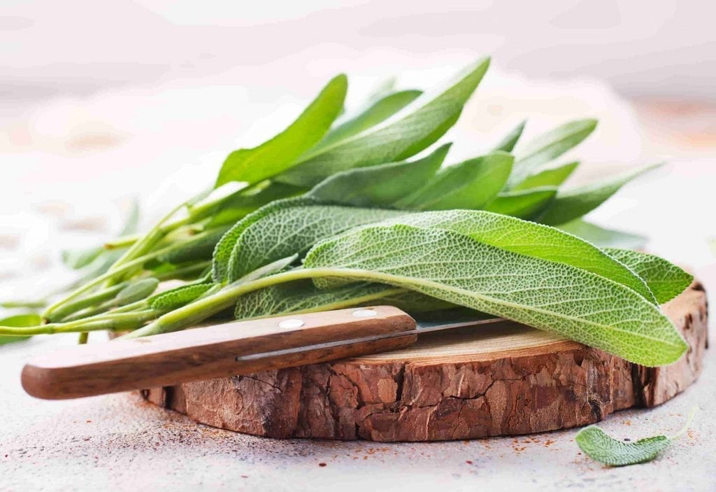 garden herbs sage leaves with board and knife