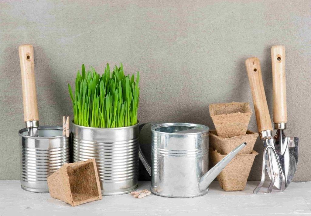 Garden Tools and Pot