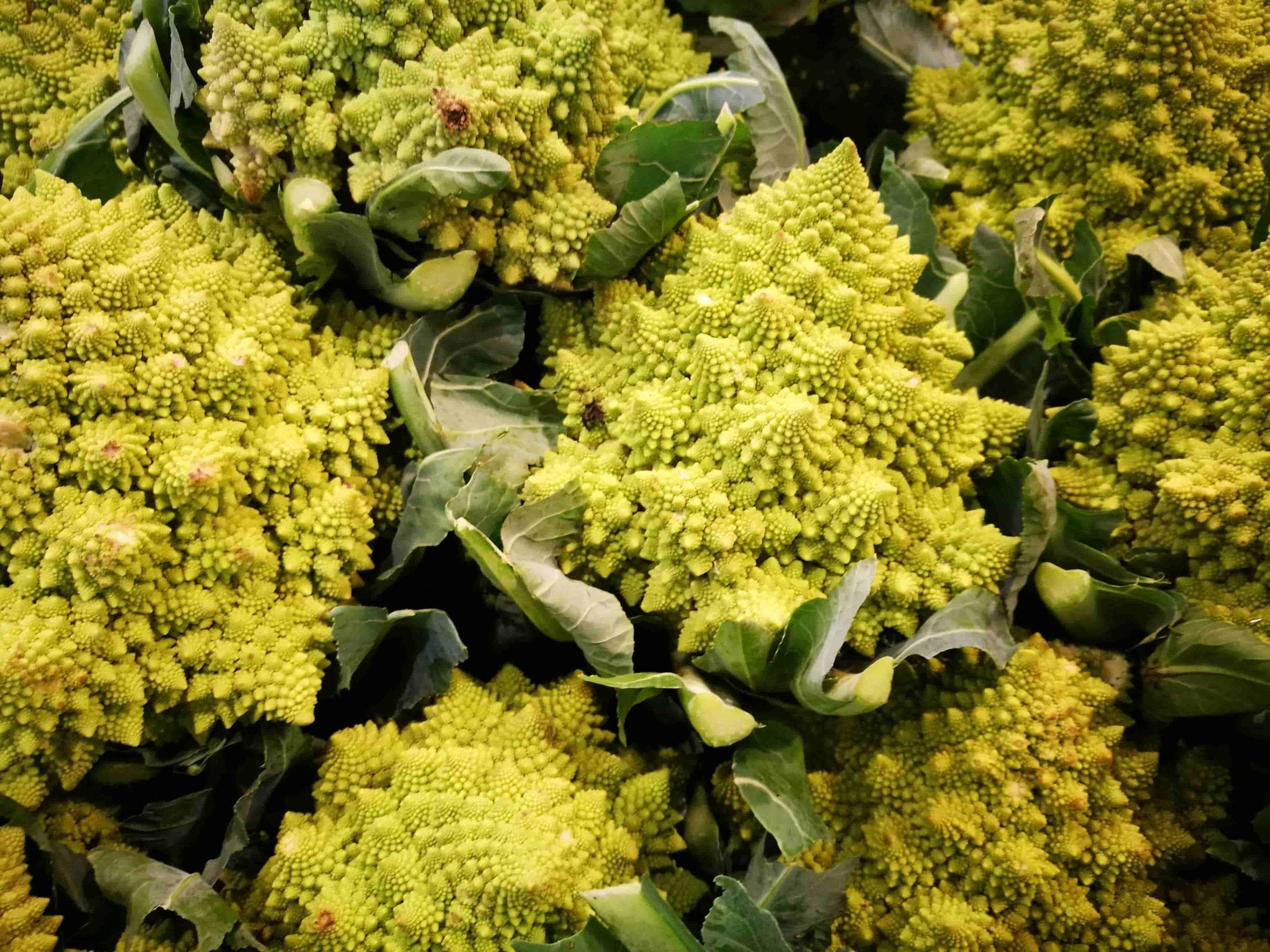 unusual vegetable Romanesco