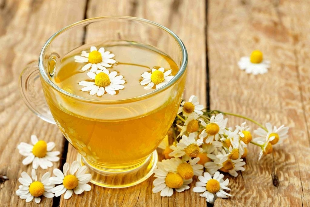 garden herb chamomile and tea