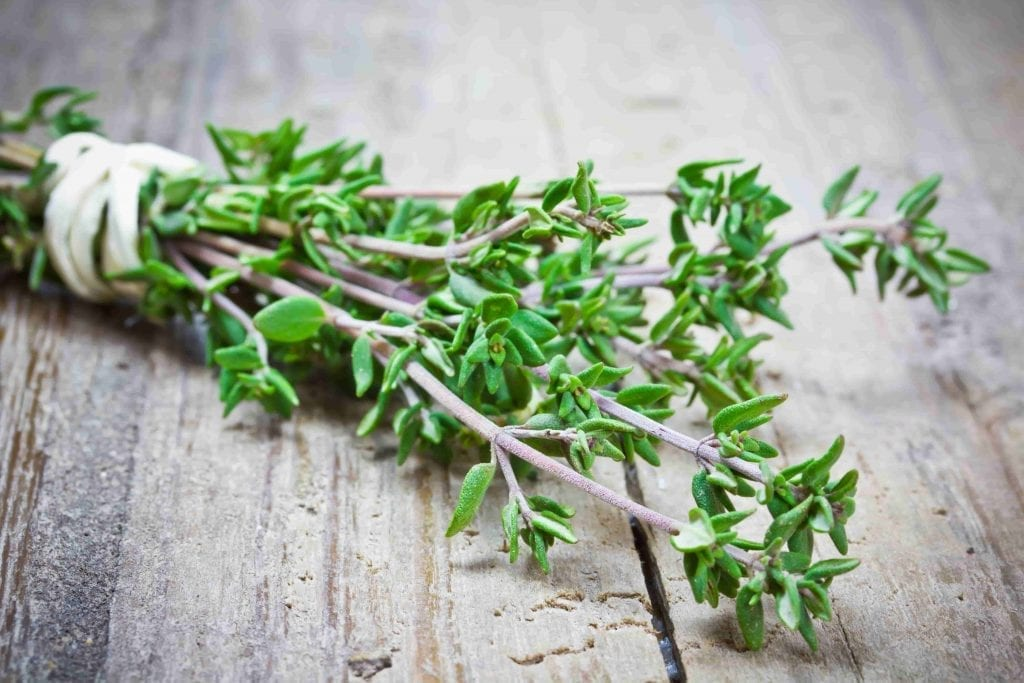 herb thyme on a wooden table