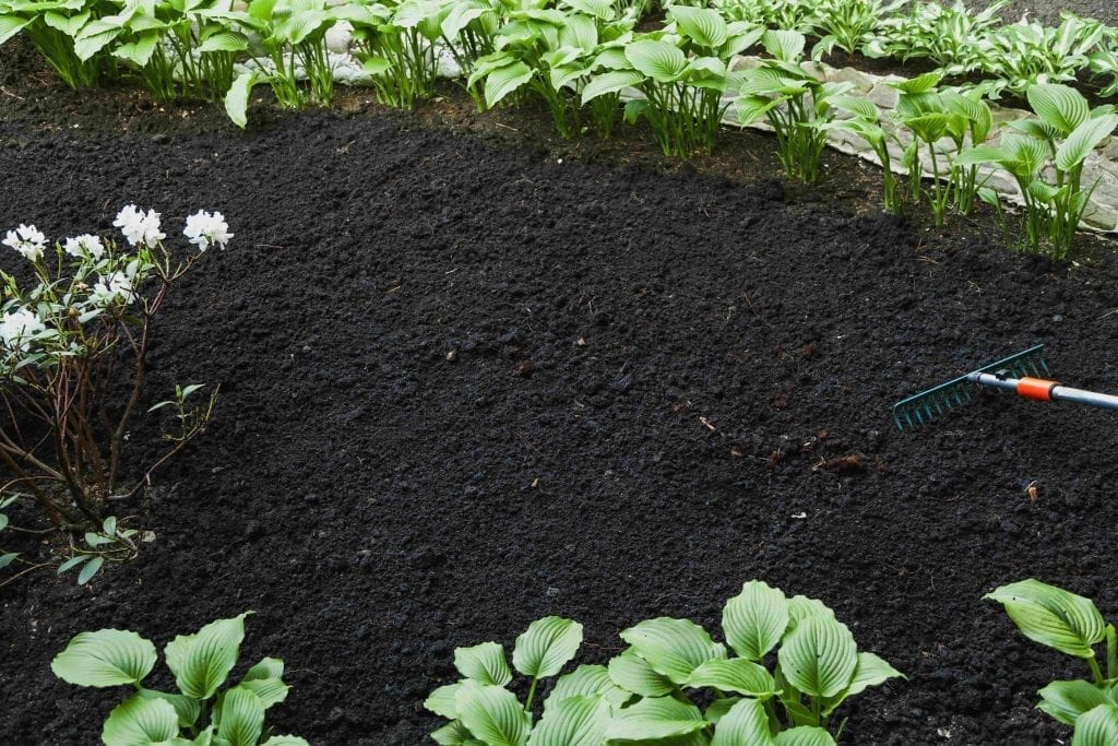 Cultivation of land with garden tool