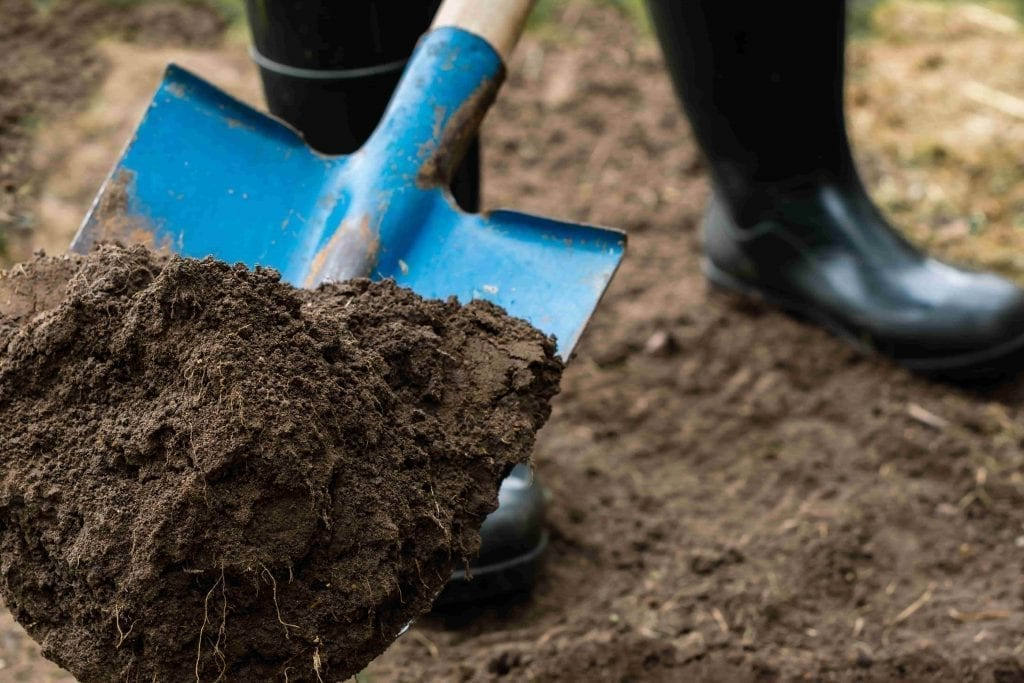 blue shovel with topsoil
