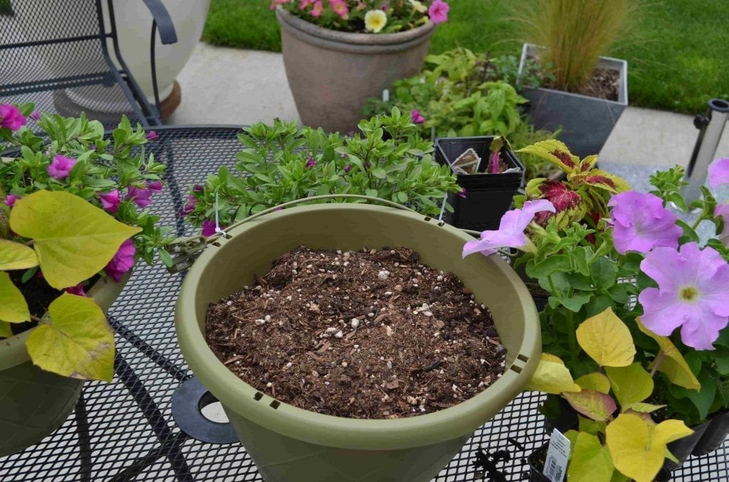 green plastic pot with potting soil for patio container planting