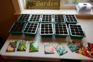 how to plant seeds for your vegetable garden containers are filled with soil with seed packets